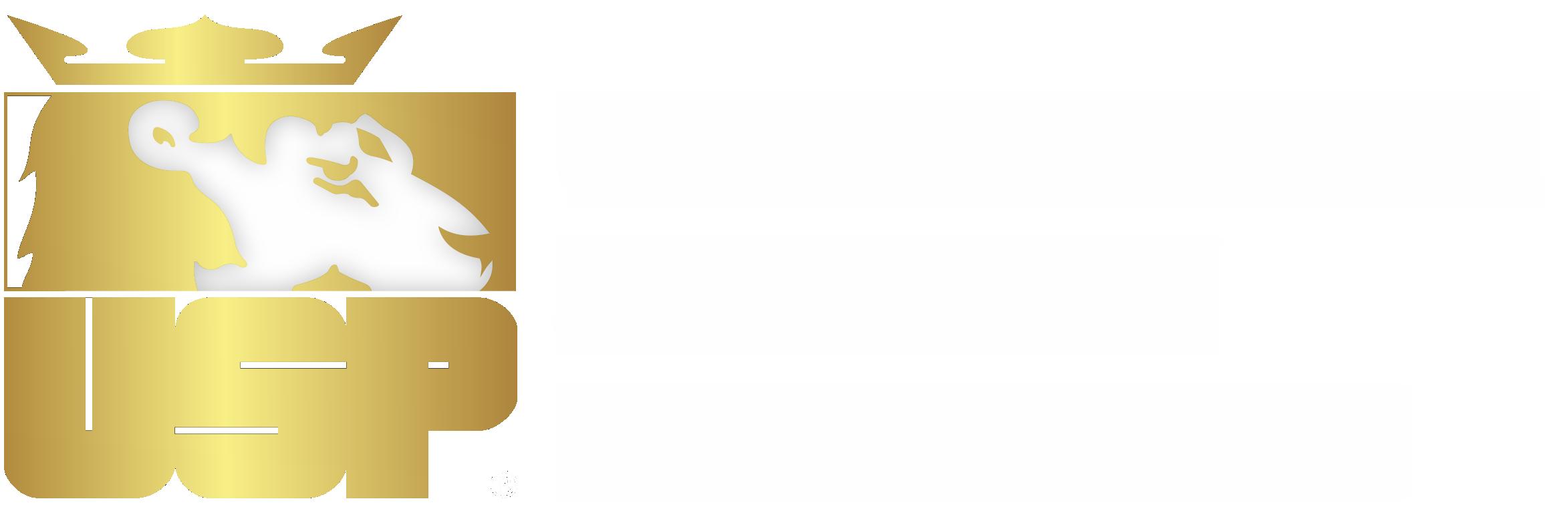 Universal Safety Program